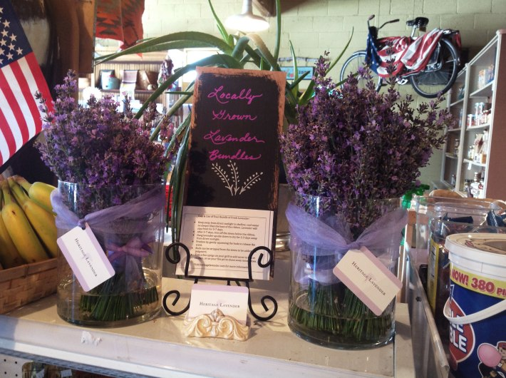 My little display at Mary's Market