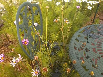 gardeners never sit still